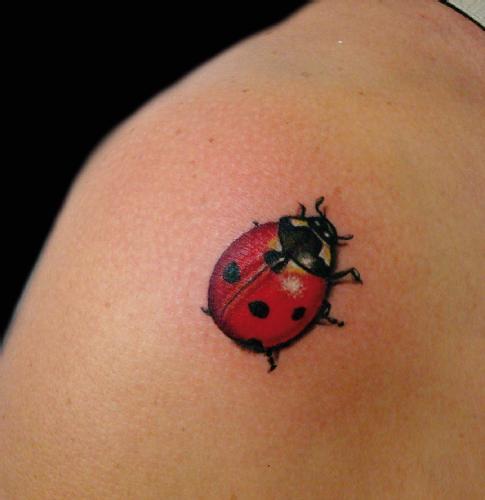 tattoo-joaninha-foto
