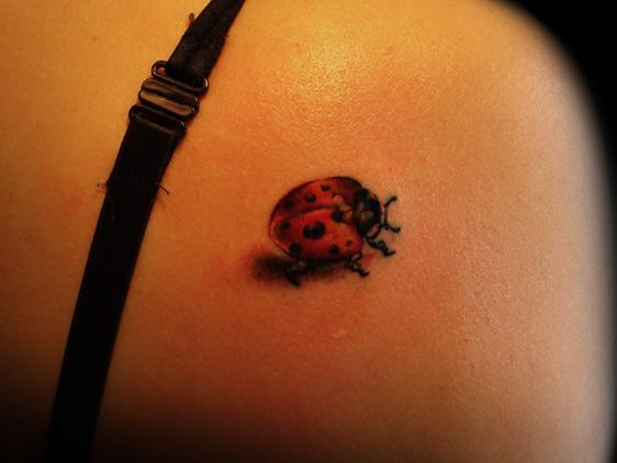 tatuagem-de-joaninha-significados